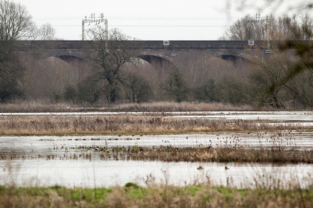 View of the Flooded Pits