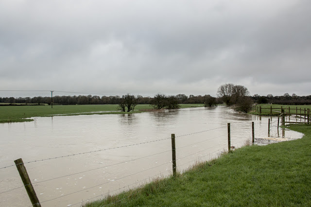 Flooded Ouse to the East