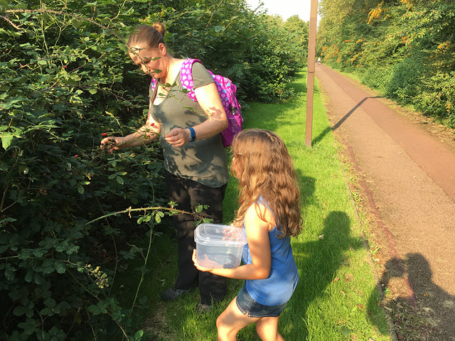 The Girls Deep into the Picking