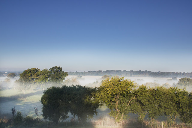 Misty Morning in the Ouse Valley