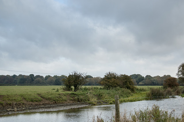 The dull grey of the day