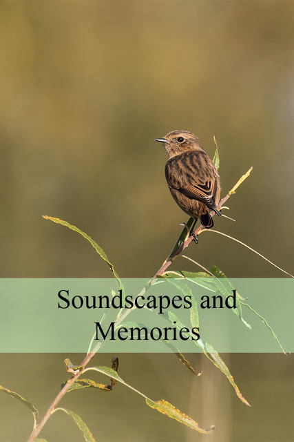 Soundscapes and Memories