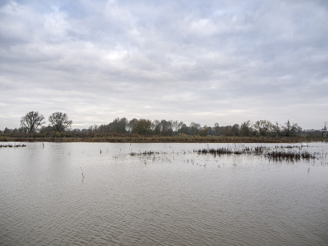 Another view from Farm Hide