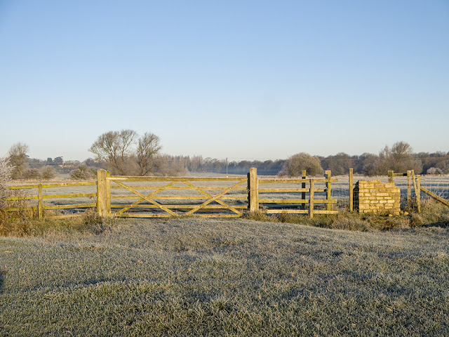 Frost covered gate