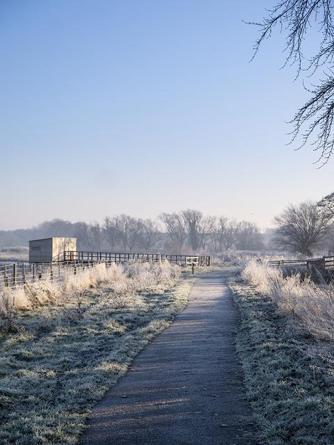 Frosty Paths