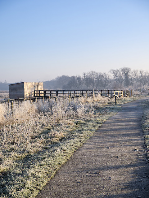 Main Hide at the Floodplain Forest Nature Reserve