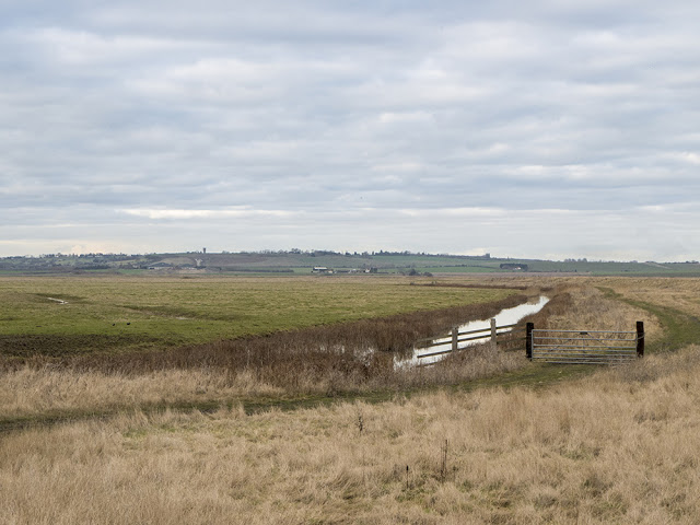 View over Elmley Marshes