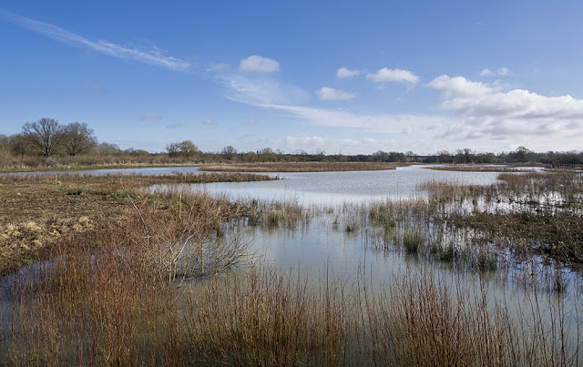 Views over the Floodplain Forest Nature Reserve from the Aqueduct Hide