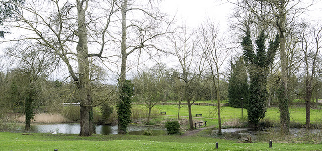 Ponds at Linford Manor