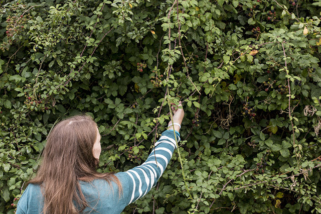 Zoe collecting the Fruit