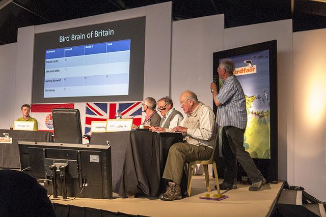 Bird Brain of Britain