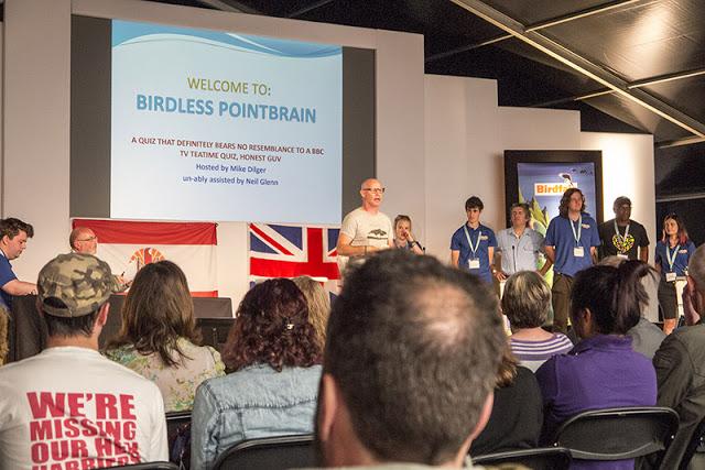 Birdless Pointbrain Live