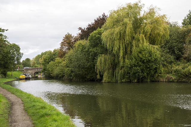 Canal Willows - there is a car on the back of one of those barges!