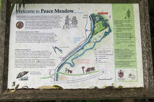 Peace Meadow