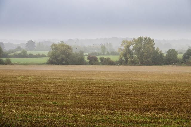 Rain shrouds the countryside