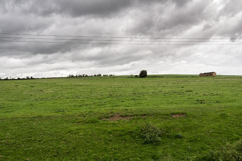 Desolate fields