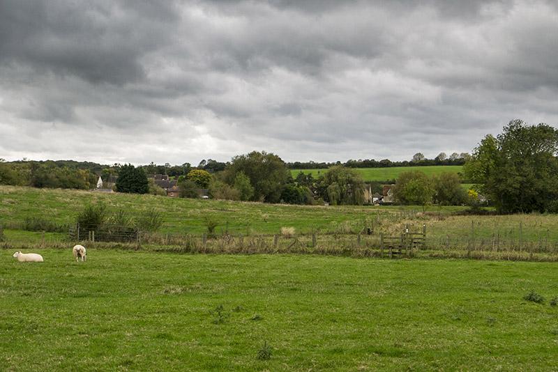 Walking Buckingham to Milton Keynes - Buckinghamshire fields