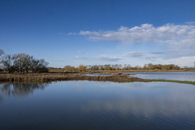 Glassy Waters of the Stilt Pits - Floodplain Forest Nature Reserve, Milton Keynes